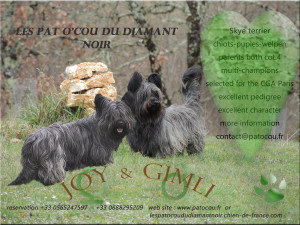 joy & gimli 1 copie (2)